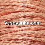 Нитки мулине СХС 754 | d754